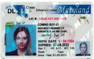 Maryland ID (Dob before Jun.13,1995)-Buy-id.com