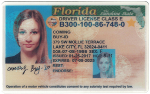 Florida ID (Dob before Aug.6,1996 only)-Buy-id.com