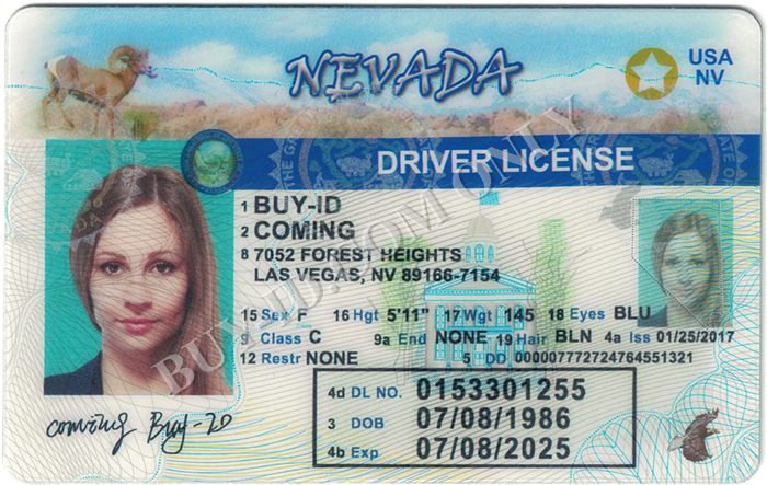 Nevada id front