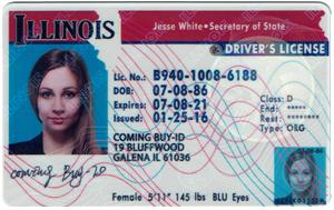 Illinois ID (Dob before Apr.28,1995)-Buy-id.com