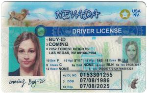 Nevada ID-Buy-id.com