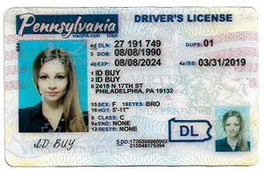 New Pennsylvania ID-Buy-id.com